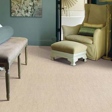 Caress Carpet by Shaw | Buford, GA
